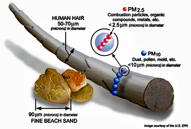 Particulate Matter - Sizes